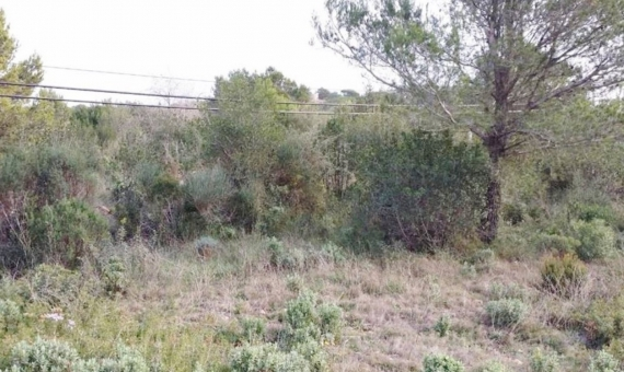 Plot with sea-view in Begur | 2