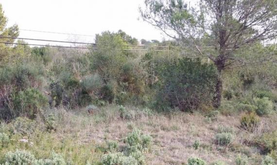 Участок с видами под застройку в Бегур | 11021-2-570x340-jpg