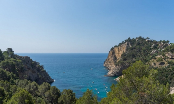 Beautiful parcel of 2.000 m2 in Tossa de Mar | 1