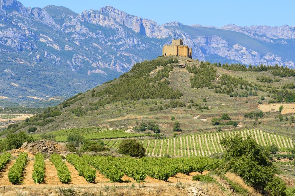 Ла Риоха. Замок и виноградники