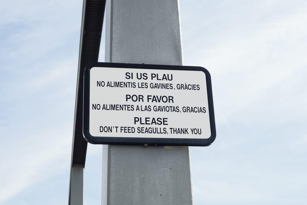 Надпись на трех языках – испанском, каталанском и английском