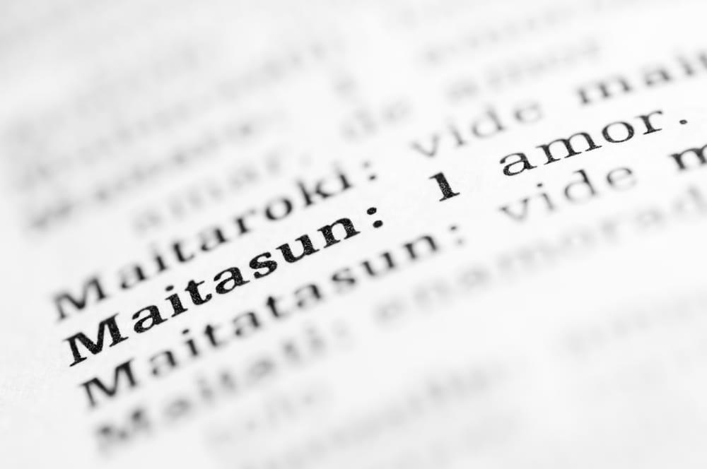 diccionario vasco