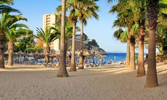 Land in Mallorca pool   | titelbild_148061-570x340-jpg