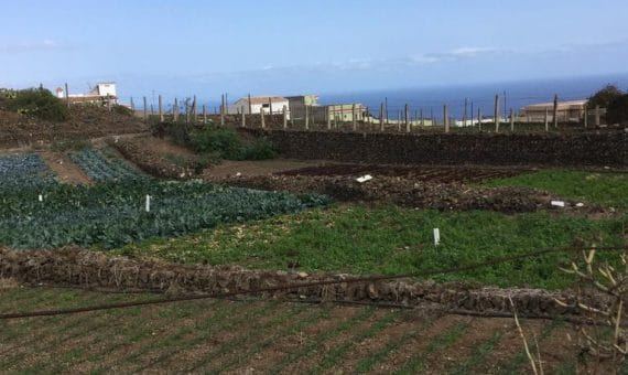 Terrain in Güímar,  m2   | 106835-570x340-jpg
