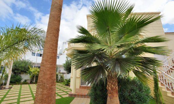 Apartment in Adeje,  Playa de Fañabe, 64 m2, garden, terrace   | 4
