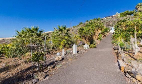 Terrain in Guia de Isora, city Alcala, 3609 m2, fully furniture, garden   | 128578-570x340-jpg