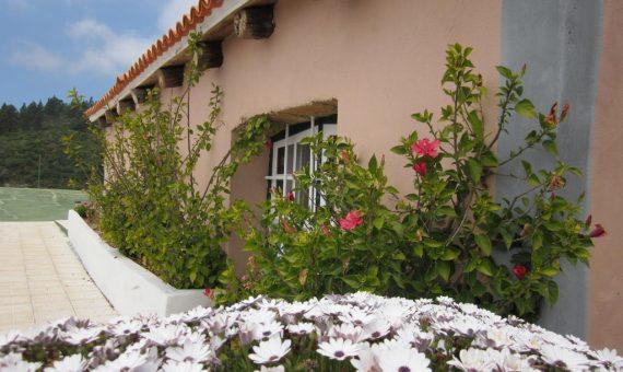 Villa in Granadilla, 240 m2, garden, terrace     96901-570x340-jpg
