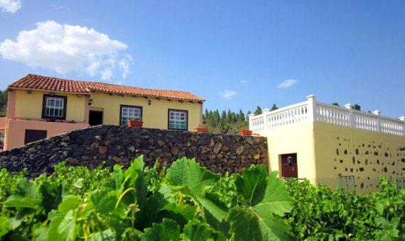 Casa en Granadilla, 240 m2, jardin, terraza   | 2