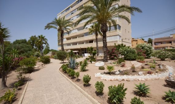 Apartment in Alicante, La Mata, 58 m2, pool   | g_ole_29e4b52b-e849-9e4f-9f18-a14022997723-570x340-jpg