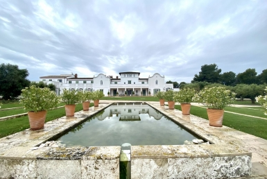 Magnificent country estate in the heart of Penedes, a suburb of Barcelona - IMG_4679
