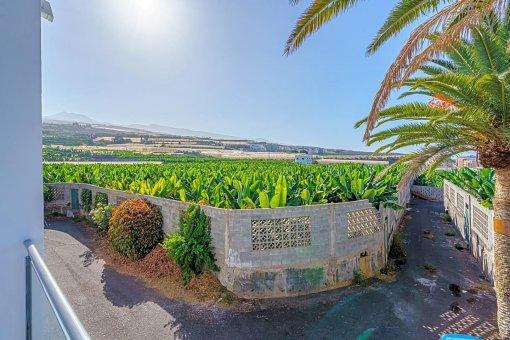 Вилла в Сантъяго-дель-Тейде, город Плайя-ла-Арена, 146 м2, сад, террасса, гараж   | 36