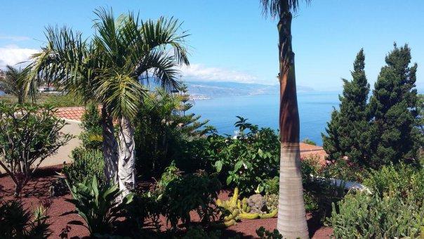 Вилла в Эль-Саусаль, 135 м2, сад, террасса, балкон, гараж   | 60