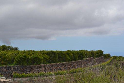 Земельный участок в Вилафлор,  м2     30